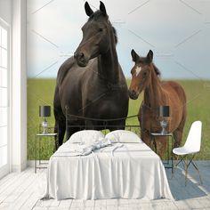 Fotobehang Paard met veulen per m² Kids Room, Bedroom Decor, Horses, Animals, Yurts, Homes, Room Kids, Animaux, Kidsroom
