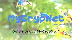 MyCrypNet est un VPN avec accès multiples paramétrables. VPN signifie Virtual Private Network ou, en français, Réseau Privé Virtuel. Un VPN relie, par une technique de tunnel sécurisé et chiffré, deux appareils, ou deux réseaux d'appareils (ordinateurs, tablettes, smartphones…), géographiquement éloignés et connectés sur un réseau public (internet par exemple).