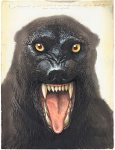 Walton Ford (American, Certainment ( Watercolor, gouache, ink and pencil Walton Ford, Animal Painter, Animal Paintings, Scary Dreams, Danse Macabre, Vintage Artwork, Art Auction, Werewolf, Natural History