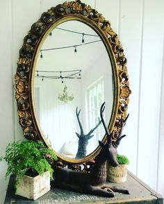 Rustic Glam Home Decor   New finds soon to be featured on #Etsy at #PortlandiaRevibe   #gold #gilt #vintage #industrial #stag #deer #antlers #ferns #succulents #garden #sunroom #modern
