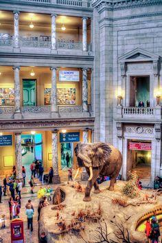 Smithsonian Museum of Natural History, Washington DC