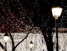 Holiday Sparkle, Paris
