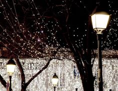 Paris lights for Christmas