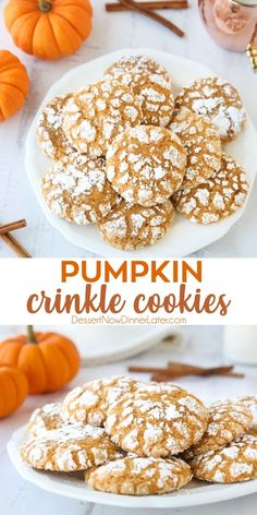 Pumpkin Crinkle Cookies are light, soft, and cake-like with warm, flavorful pumpkin spices. You'll love this easy fall cookie coated in powdered sugar that cracks as it bakes. Fall Desserts, Cookie Desserts, Just Desserts, Cookie Recipes, Delicious Desserts, Dessert Recipes, Yummy Food, Easy Fall Deserts, Recipes Dinner