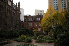 Medicinal Herb Garden at the College of Physicians of Philadelphia by a_sorense, via Flickr