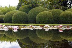 garden 1 by Hilde Verbeke on 500px
