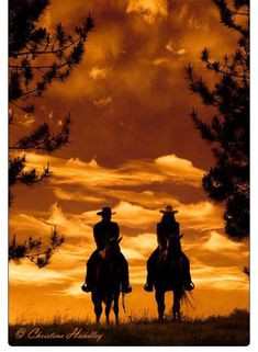 Beautiful silhouette of couple riding horses at sunset. Foto Cowgirl, Cowboy And Cowgirl, Cowboy Horse, Cowboy Art, Silhouettes, Westerns, Ranch Life, Le Far West, Beautiful Horses