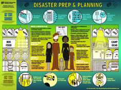 University of Florida IFAS Disaster Prep & Planning poster