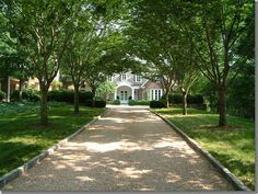 I've always loved tree-lined driveways
