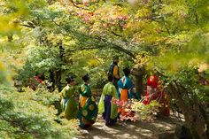 Japaninfo added 21 new photos to the album: แดงพระเพลิง+ตะกร้อ Kemari+สถาปัตยกรรมเก่าแก่@Tanzan-jinja/Nara — at 談山神社.