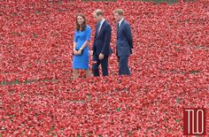 Catherine, The Duchess of Cambridge, Prince William, Duke of Cambridge and Prince Harry visit The Tower of London's 'Blood Swept Lands and Seas of Red' ceramic poppy installation by artist Paul Cummins, commemorating the 100th anniversary of the outbreak of First World War in London, England.