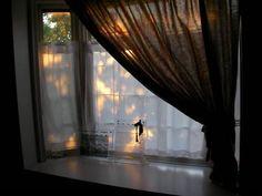 出窓にカーテン 木漏れ日をプロジェクターで表現?