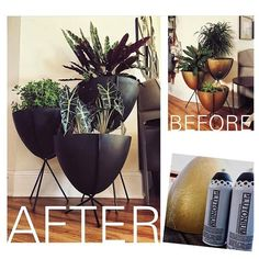 Indoor Planter Upcycle: Before & After by #AGildedBlog - a life of design // #PlutoniumPaint #SprayPaint #MadeInTheUSA #DIY #Crafts #Decor