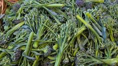 Broccolini by Ethan H.