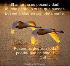 〽️Poseer es destruir toda posibilidad de amor ! OSHO...