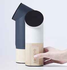 the project proposes bamboo as an alternative to plastics and metals to create semi-finished and/or completed products for consumer industries.