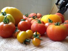 5 Uses for Tomatoes Besides Eating Them >> http://www.diynetwork.com/made-and-remade/learn-it/5/5-things-you-can-do-with-tomatoes-beside-eat-them?soc=pinterest