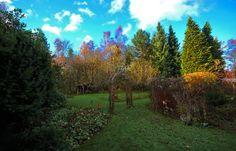 Kalt und trocken, Sonnenschein, ... uch in meinem Garten, das erfreut die Äugelein, auf Schnee kann ich noch warten. Auch wenn heut Volkstrauertag, früher öfters düster, grau, ich dieses Wetter lieber mag, mit ein bisschen blau.  :