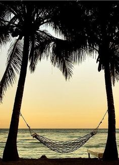 Hammock, something I can lie down on, forget everything else in the world, and just drift away