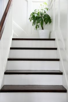 Love white stairs with a dark chocolate brown top! Exactly how we want them <3