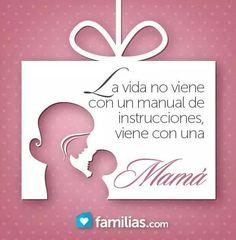 La vida viene con una mamá