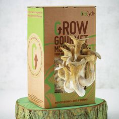 I've just found Grow Your Own Mushrooms Kit. Grow your own gourmet pearl oyster mushrooms at home with this super easy and 100% reliable mushroom grow kit, grown from recycled coffee grounds!. £14.95