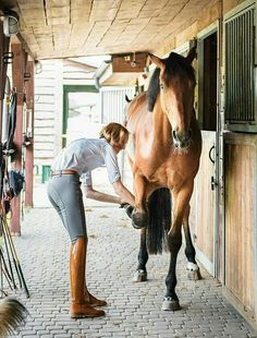 the curious bumblebee : Photo Equestrian Chic, Equestrian Outfits, Beautiful Horses, Animals Beautiful, Horse Gear, Horse Riding, Riding Boots, Horse Farms, Horse Photography
