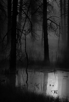 By the stream she walked, the fog surrounding her, alone she waited.