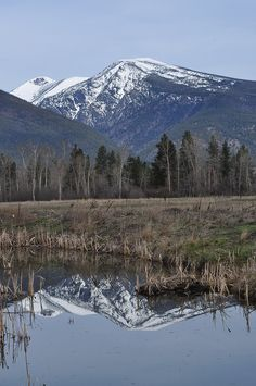 """Yes it really is this beautiful: """"Bitterroot Mountains from the Lee Metcalf Wildlife Refuge near Stevensville, Montana, May 2011, Roger M. Peterson by Forest Service - Northern Region, via Flickr"""""""