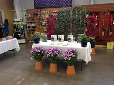 Proven Winners at Calloway's Nursery in North Plano Proven Winners, This Is Us, Nursery, Table Decorations, Garden, Plants, Garten, Baby Room, Lawn And Garden