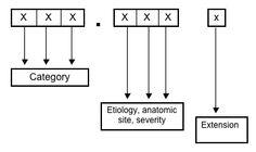 ICD-10 Code Breakdown - Bing Images