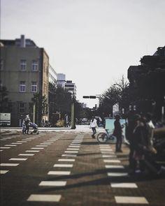 Zou-no-hana park iPhone7/Procam/VSCO  #yokohama #象の鼻パーク #japan #procam #vscocam #youmobile #instadiary #shotoniPhone #shotoniPhone7 #instagramjapan #ig_japan #instadiary #iphonephotography #ink361_mobile #ink361_asia #reco_ig #igersjp #mwjp #team_jp_ #indies_gram #hueart_life #ig_street #streetphotography #写真好きな人と繋がりたい #写真撮ってる人と繋がりたい #iPhone越しの私の世界 #kanagawaphotoclub #yokohamagram #myyokohama