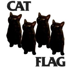 cat flag...this is odd but I LOVE black cats so I am posting it