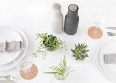 Tischlein deck dich... mit Pflanzen!