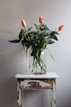 Januari är tulpanernas tid!