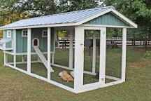 chickwn coops for 12 chickens - Google Search