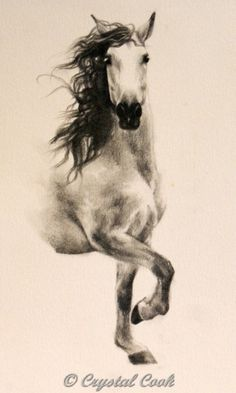 Without Wings, Andalusian horse drawing, painting by artist Crystal Cook