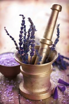 mortar with lavender  Stock Photo - 10881836