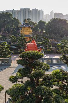 In Teil 3 meiner Hongkong-Reihe nehme ich dich mit auf eine spannende und manchmal auch skurrile Reise in eine Welt voller Aberglaube, mächtiger Götter und wunderschöner Tempelanlagen. Lust auf mehr? Na dann los!