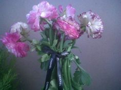 A Chanel ribbon for a pink bouquet Pink Bouquet, Glass Vase, Ribbon, Chanel, Floral, Flowers, Plants, Home Decor, Tape