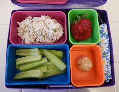 Eggface Bento Box Lunches - Low Carb Protein Packed Weight Loss Surgery Friendly