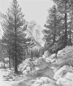 Diane Wright Art Journal: Recent Article
