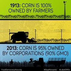 Join Food Democracy Now! to Stop Monsanto! www.fooddemocracynow.org #GMOs…