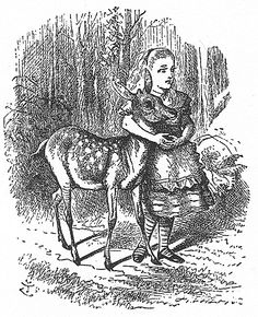 "One of the illustrations by John Tenniel in ""Through the Looking-Glass, and What Alice Found There""."