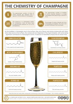 The Chemistry of Champagne