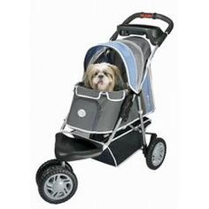 1st Class Pet Jogger - Blue, Pink, or Yellow