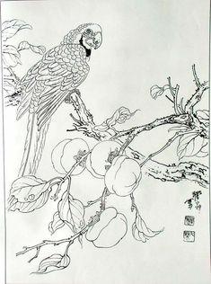 Bird Pencil Drawing, Pencil Drawings, Silk Painting, Painting & Drawing, Adult Coloring, Coloring Pages, Nature Illustration, Chinese Painting, Box Art