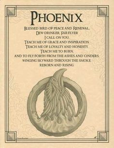 Phoenix Evocation Parchment Book of Shadows Page! Pagan wicca witch in Collectibles, Religion & Spirituality, Wicca & Paganism Phenix Tattoo, Animal Spirit Guides, Phoenix Bird, Phoenix Animal, Phoenix Dragon, Pagan Witch, Beltane, Animal Totems, Samana