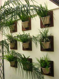 CACTUS PAISAGISMO: Jardim Vertical