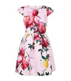 cb111e5d4a258 TED BAKER Tillea Citrus Bloom Dress.  tedbaker  cloth
